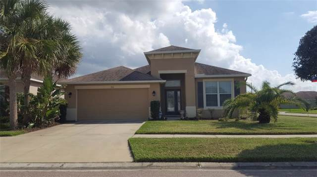 7101 Nightshade Drive, Riverview, FL 33578 (MLS #T3209560) :: Team Bohannon Keller Williams, Tampa Properties