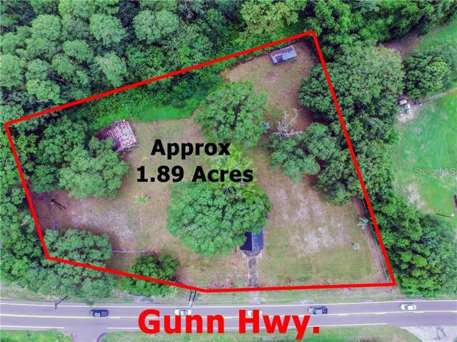 17311 Gunn Highway, Odessa, FL 33556 (MLS #T3209715) :: Rabell Realty Group