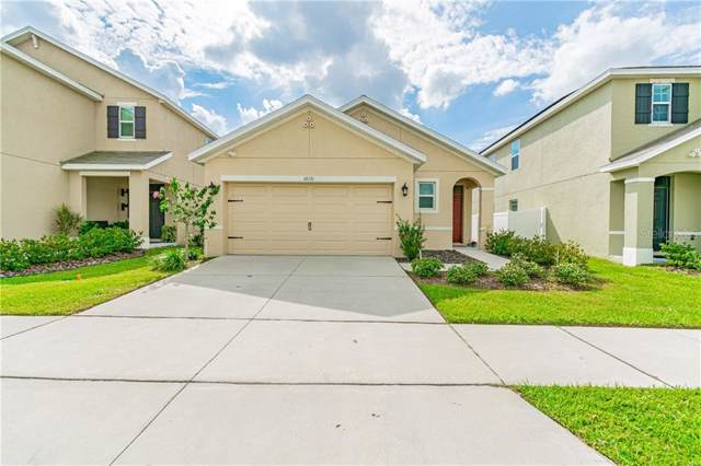 10131 Mangrove Well Road, Sun City Center, FL 33573 (MLS #T3209743) :: Burwell Real Estate