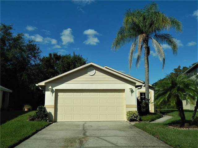 6523 Gentle Ben Circle, Wesley Chapel, FL 33544 (MLS #T3209749) :: Lovitch Realty Group, LLC