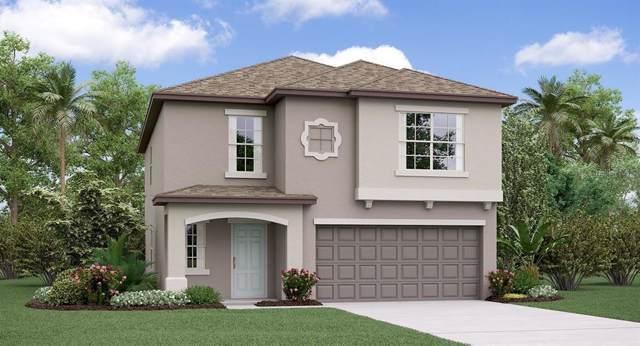 15427 Broad Brush Drive, Ruskin, FL 33573 (MLS #T3209750) :: Team Bohannon Keller Williams, Tampa Properties