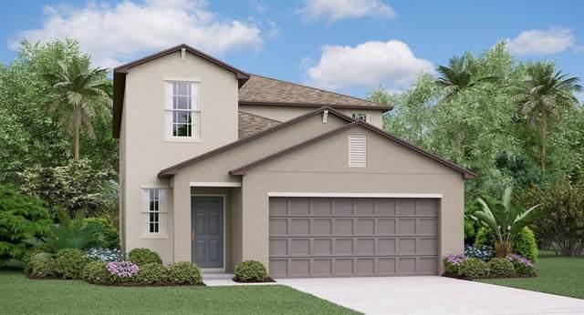 15425 Broad Brush Drive, Ruskin, FL 33573 (MLS #T3209760) :: Team Bohannon Keller Williams, Tampa Properties