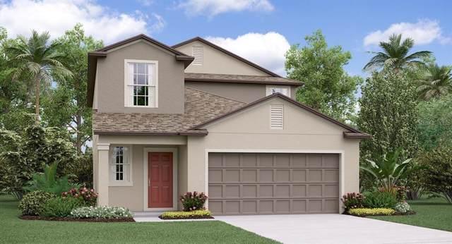 15401 Broad Brush Drive, Ruskin, FL 33573 (MLS #T3209766) :: Team Bohannon Keller Williams, Tampa Properties