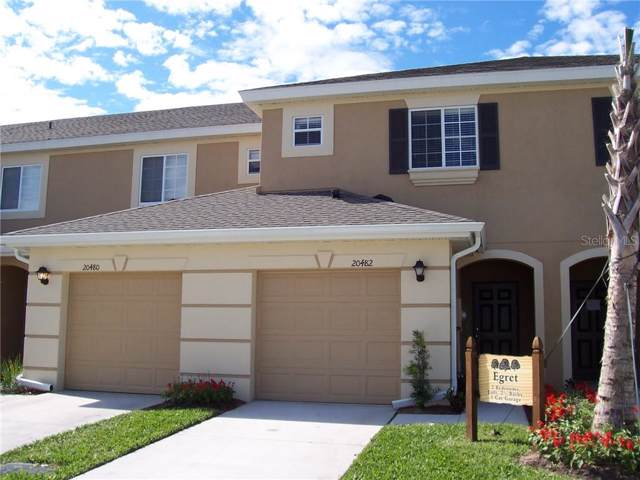 20482 Needletree Drive, Tampa, FL 33647 (MLS #T3209831) :: Cartwright Realty