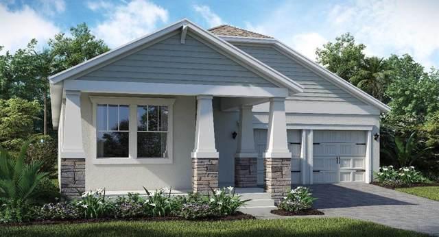 12302 Folklore Lane, Orlando, FL 32832 (MLS #T3209845) :: Lovitch Realty Group, LLC