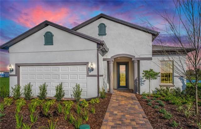 4673 Ballast Crest Cove, Land O Lakes, FL 34638 (MLS #T3209848) :: Lovitch Realty Group, LLC