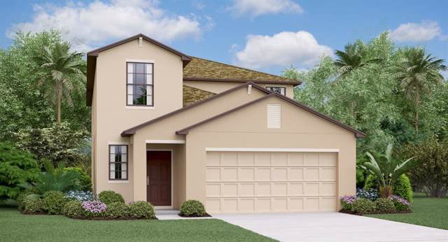 11418 Sage Canyon Drive, Riverview, FL 33578 (MLS #T3209851) :: The Duncan Duo Team