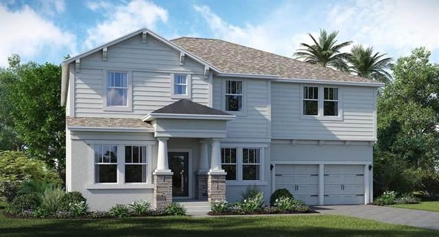 12440 Folklore Lane, Orlando, FL 32832 (MLS #T3209855) :: Lovitch Realty Group, LLC