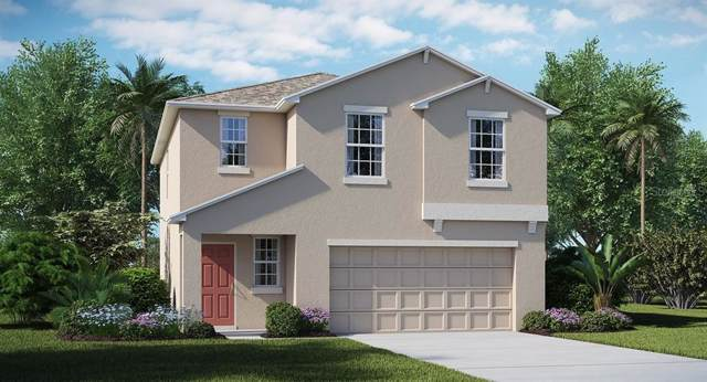 11421 Sage Canyon Drive, Riverview, FL 33578 (MLS #T3209856) :: The Duncan Duo Team