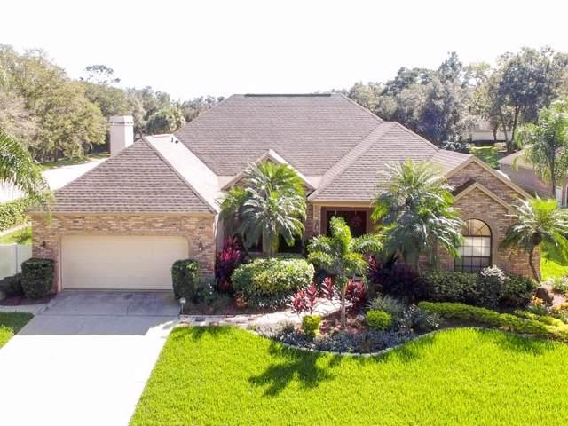2309 Highlander Way, Valrico, FL 33596 (MLS #T3209906) :: Team Bohannon Keller Williams, Tampa Properties