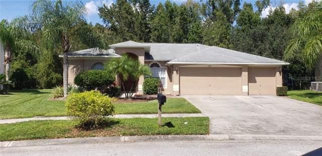 Address Not Published, Wesley Chapel, FL 33544 (MLS #T3209907) :: Alpha Equity Team
