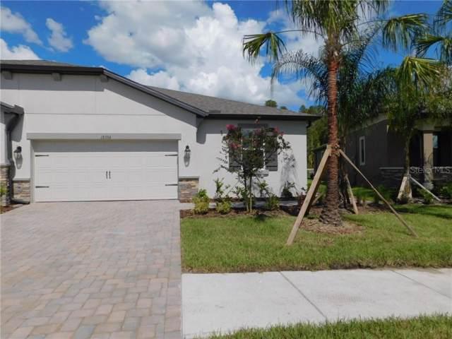 19353 Hawk Valley Drive, Tampa, FL 33647 (MLS #T3209912) :: 54 Realty