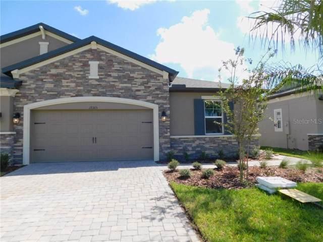 19365 Hawk Valley Drive, Tampa, FL 33647 (MLS #T3209914) :: 54 Realty