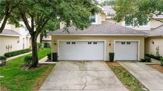 14927 Salamander Place, Tampa, FL 33625 (MLS #T3209920) :: Team Bohannon Keller Williams, Tampa Properties