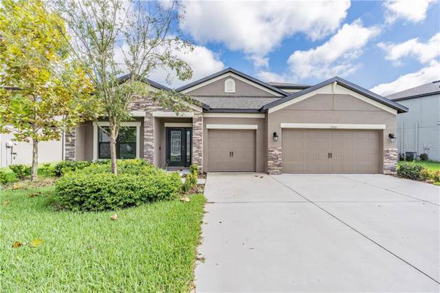 7906 Lago Mist Way, Wesley Chapel, FL 33545 (MLS #T3209926) :: Team Bohannon Keller Williams, Tampa Properties