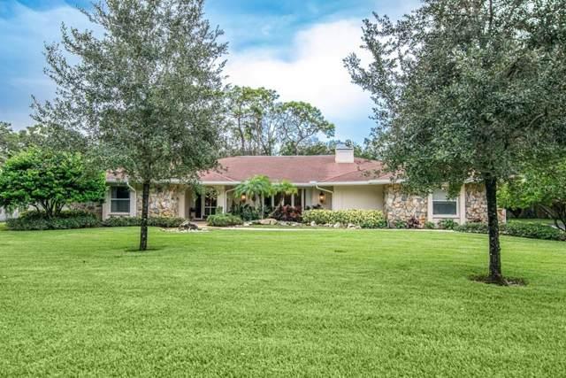 1811 Oak Creek Drive, Dunedin, FL 34698 (MLS #T3209984) :: Dalton Wade Real Estate Group