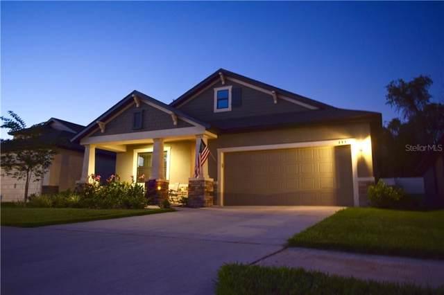 133 Elina Sky Drive, Seffner, FL 33584 (MLS #T3209986) :: Team Bohannon Keller Williams, Tampa Properties