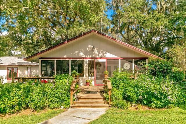 32643 Jesse Jones Avenue, San Antonio, FL 33576 (MLS #T3210013) :: Lock & Key Realty