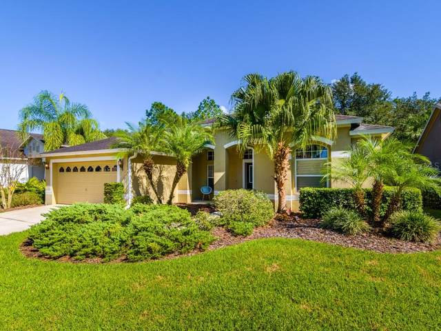 10146 Whisper Pointe Drive, Tampa, FL 33647 (MLS #T3210057) :: Cartwright Realty