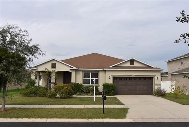 11114 Hartford Fern Drive, Riverview, FL 33569 (MLS #T3210067) :: Team Bohannon Keller Williams, Tampa Properties