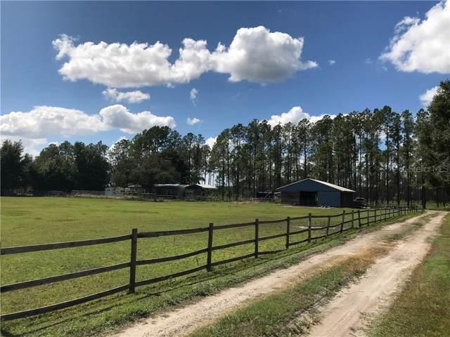 7009 Five Acre Road, Plant City, FL 33565 (MLS #T3210116) :: The Duncan Duo Team