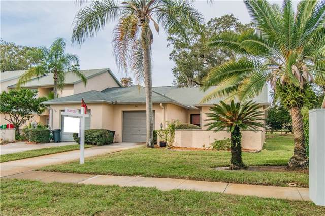 350 Buckingham Place, Palm Harbor, FL 34684 (MLS #T3210176) :: Bridge Realty Group