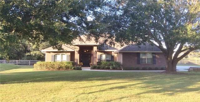 27749 Austin Woods Drive, Dade City, FL 33525 (MLS #T3210184) :: Lock & Key Realty
