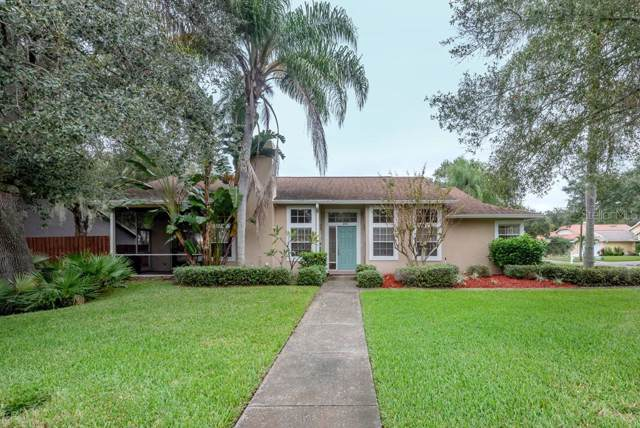 1200 Country Trails Drive, Safety Harbor, FL 34695 (MLS #T3210193) :: Cartwright Realty