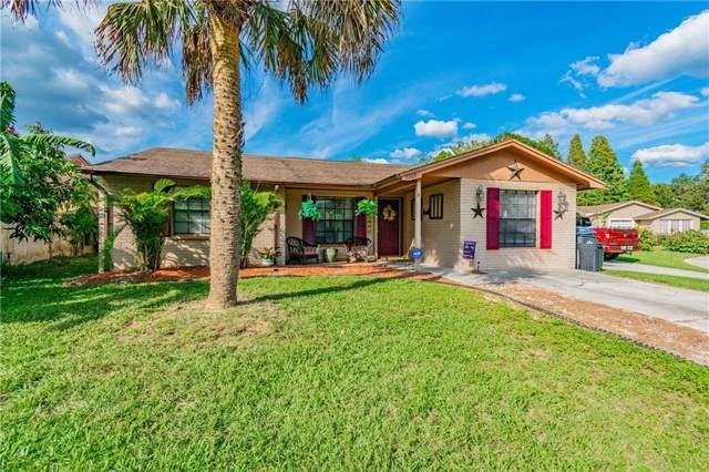 7209 Lunita Court, Tampa, FL 33625 (MLS #T3210214) :: Cartwright Realty