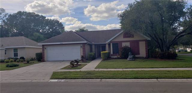 15210 Willowdale Road, Tampa, FL 33625 (MLS #T3210228) :: Cartwright Realty