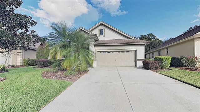 8095 Lake James Boulevard, Lakeland, FL 33810 (MLS #T3210252) :: Gate Arty & the Group - Keller Williams Realty Smart