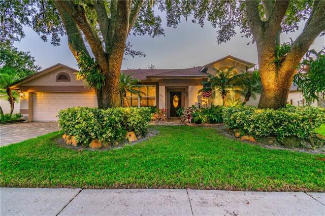 6316 Forrestal Drive, Tampa, FL 33625 (MLS #T3210259) :: Team Bohannon Keller Williams, Tampa Properties