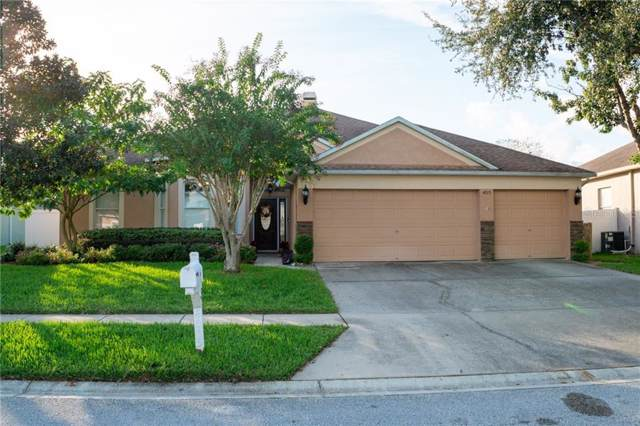 4015 Roswell Place, Land O Lakes, FL 34639 (MLS #T3210302) :: RE/MAX CHAMPIONS