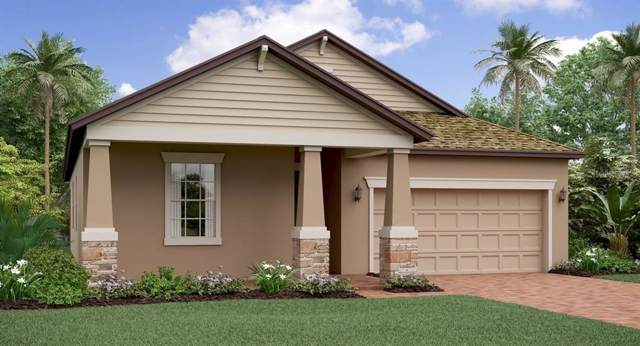 8851 Flourish Drive, Land O Lakes, FL 34637 (MLS #T3210385) :: The Robertson Real Estate Group