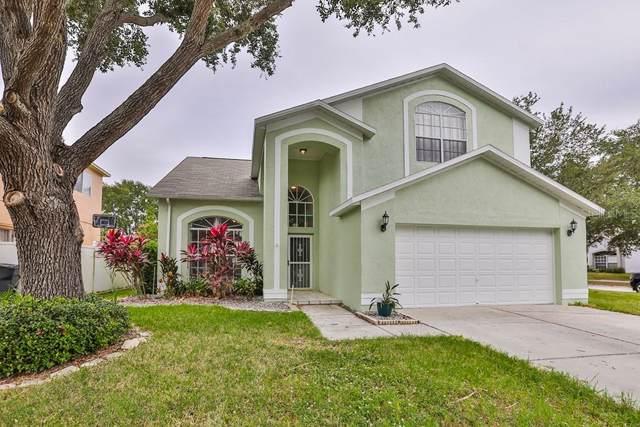 13430 Beechberry Drive, Riverview, FL 33579 (MLS #T3210393) :: Team Bohannon Keller Williams, Tampa Properties