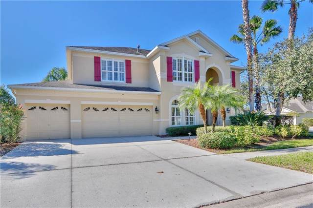 16174 Colchester Palms Drive, Tampa, FL 33647 (MLS #T3210410) :: GO Realty