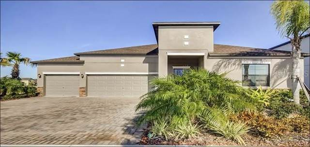 11708 Sunburst Marble Road, Riverview, FL 33579 (MLS #T3210433) :: Dalton Wade Real Estate Group