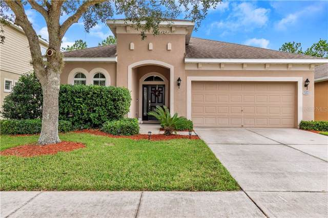 30541 Latourette Drive, Wesley Chapel, FL 33545 (MLS #T3210442) :: Cartwright Realty
