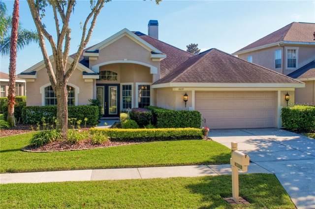 10133 Deercliff Drive, Tampa, FL 33647 (MLS #T3210481) :: Cartwright Realty