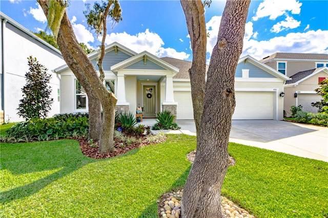 4918 Lakeshore Oaks Court, Tampa, FL 33624 (MLS #T3210488) :: Lucido Global