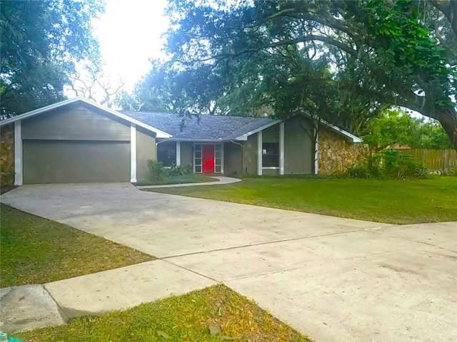7820 Bullara Drive, Temple Terrace, FL 33637 (MLS #T3210599) :: Team Borham at Keller Williams Realty