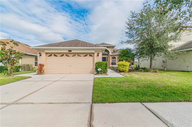 10914 Observatory Way, Tampa, FL 33647 (MLS #T3210680) :: Cartwright Realty