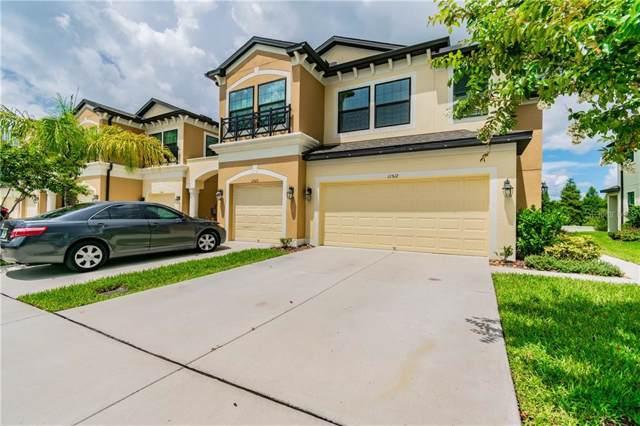 11512 Crowned Sparrow Lane, Tampa, FL 33626 (MLS #T3210730) :: Delgado Home Team at Keller Williams
