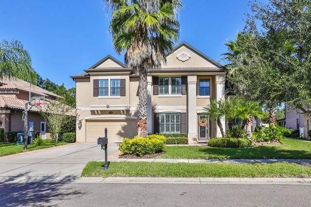 15629 Hampton Village Drive, CARROLLWOOD, FL 33618 (MLS #T3210736) :: Delgado Home Team at Keller Williams