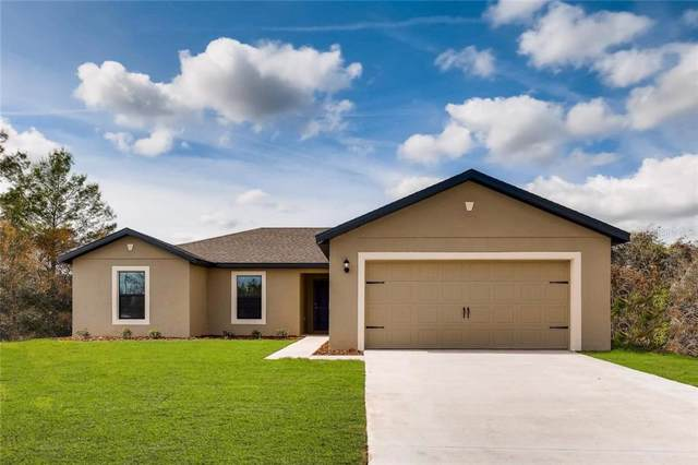 1187 Moyle Way, Mascotte, FL 34753 (MLS #T3210743) :: Gate Arty & the Group - Keller Williams Realty Smart