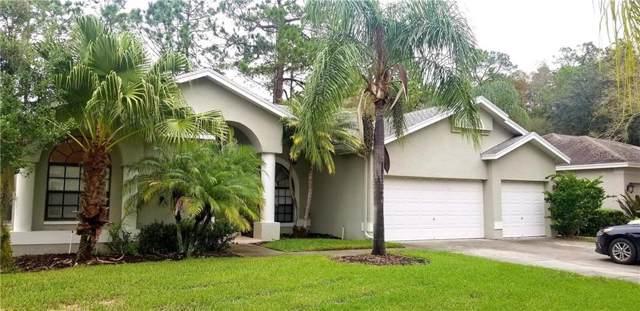 4389 Worthington Circle, Palm Harbor, FL 34685 (MLS #T3210768) :: Premium Properties Real Estate Services