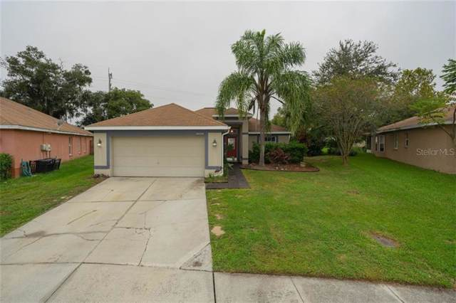 34519 Smart Drive, Zephyrhills, FL 33541 (MLS #T3210873) :: Lock & Key Realty