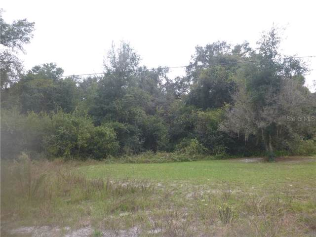 Orchid Pkwy, Dade City, FL 33523 (MLS #T3210885) :: The Figueroa Team