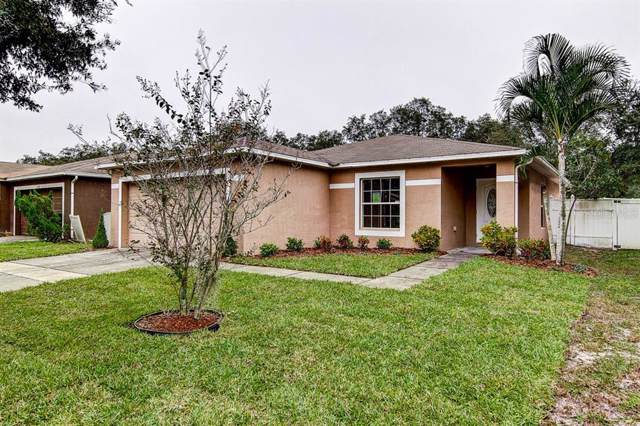 13732 Fareham Road, Odessa, FL 33556 (MLS #T3210938) :: Griffin Group