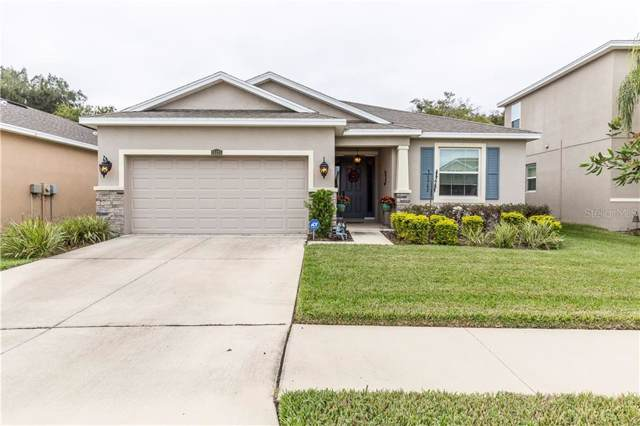 11421 Warren Oaks Place, Riverview, FL 33578 (MLS #T3210951) :: Cartwright Realty
